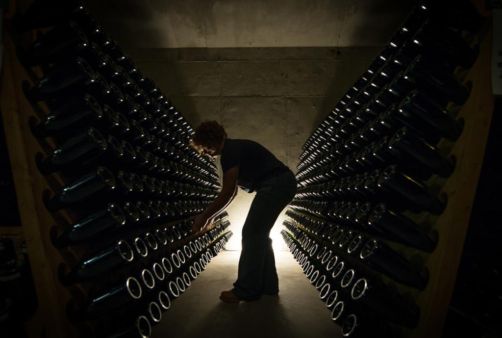 Sarah is riddling, two at a time, each bottle of sparkling wine in the filled riddling racks